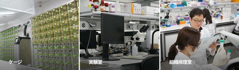 Cage, Laboratory, Tissue pathology room